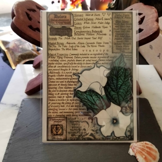 Datura Book of Shadows Page